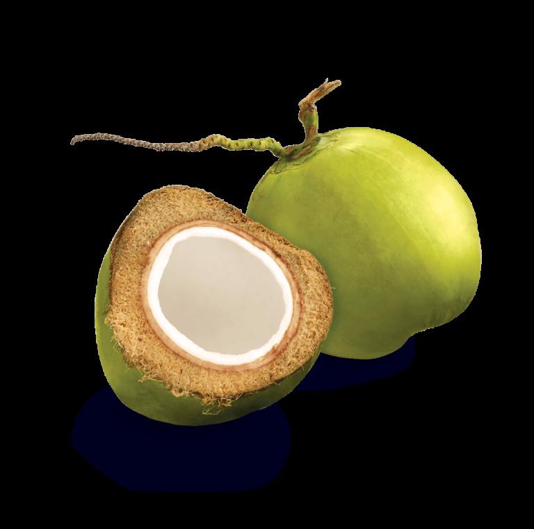 fruit-Coco