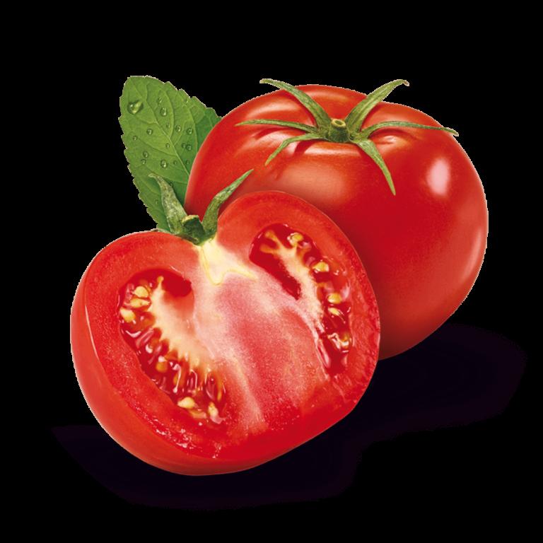 fruit-Tomate